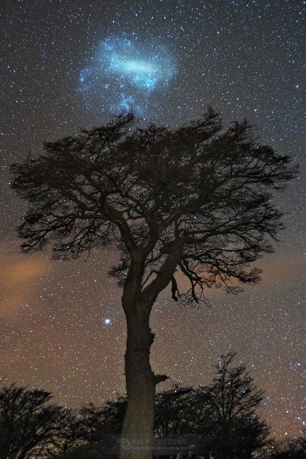 Звёздное небо и космос в картинках 1481745069186216106