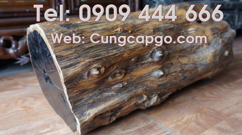 Giá trị của gỗ mun lào, gỗ mun sừng và gỗ mun sọc Go-mun-copy