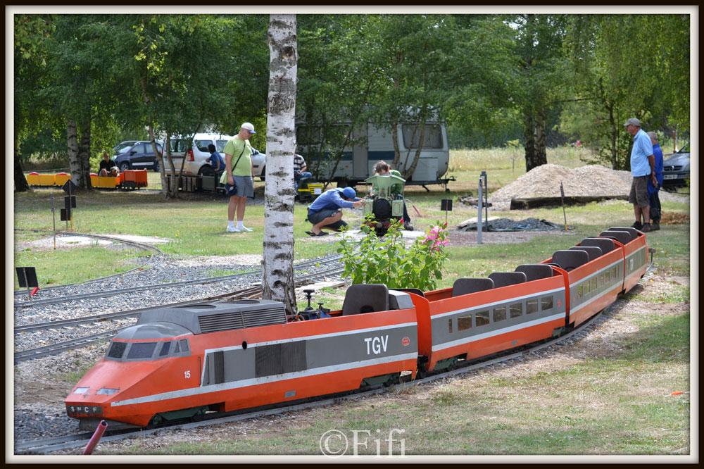 dép 41 - Chitenay - C.V.D.P - Page 5 Chitenay-Aout-2015-(11)