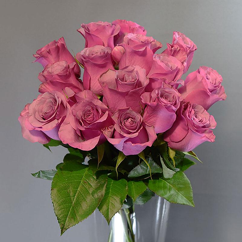 Što sve vole žene, prikaži slikom - Page 30 Cvje%C4%87arnica-Fani_Rezano-cvije%C4%87e_Ru%C5%BEi%C4%8Daste-ru%C5%BEe
