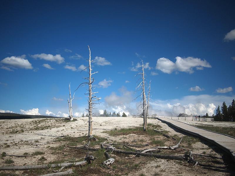 [USA - 3] Cross Country - Yellowstone 20120611_2004