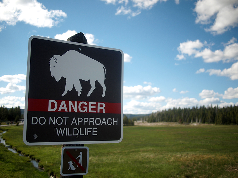[USA - 3] Cross Country - Yellowstone 20120611_2031