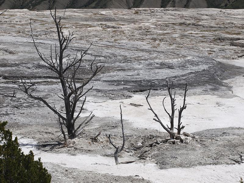 [USA - 3] Cross Country - Yellowstone 20120612_2220