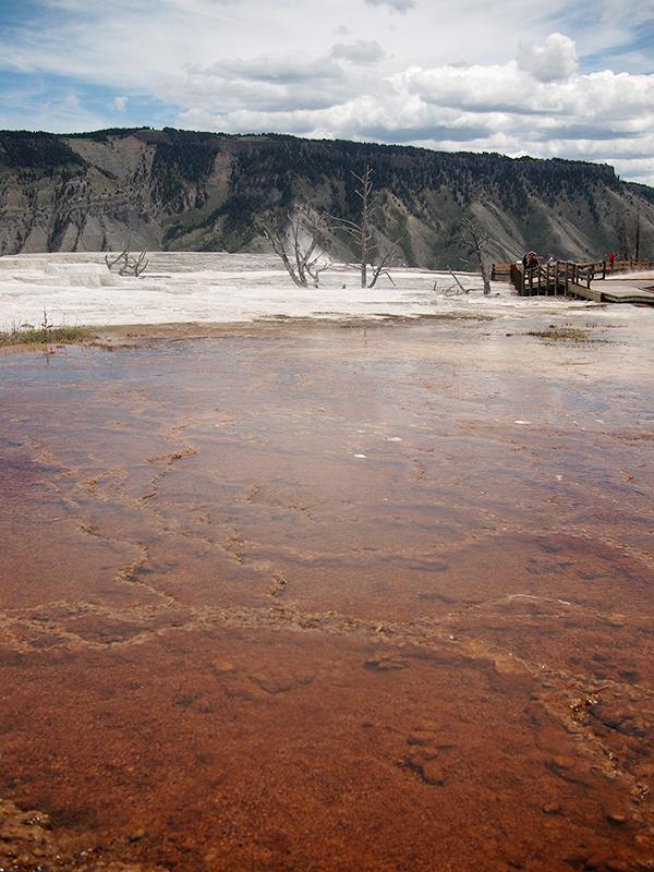 [USA - 3] Cross Country - Yellowstone 20120612_2308
