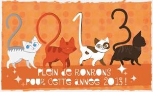 créer un forum : Assistant-vétérinaire  Bonne-ann%C3%A9e-2013-300x180