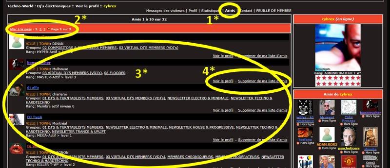 PROFIL : Le profil avancé (messages des visiteurs, stats...) Guide__profil_avance_amis