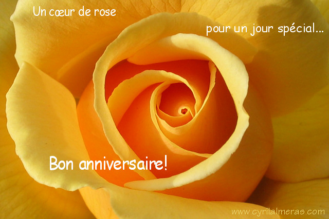 Samedi 28 février 2009 !!! IMG_2317_carte_anniversaire_coeur_de_rose