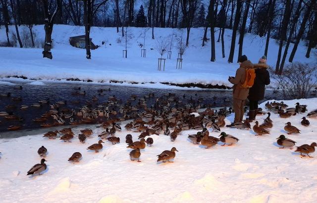 Зимняя сказка на наших фотографиях - Страница 14 2fa665ed0f70