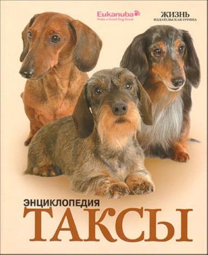 Интернет-магазин Red Dog- только качественные товары для собак! - Страница 7 Cb801ff93597