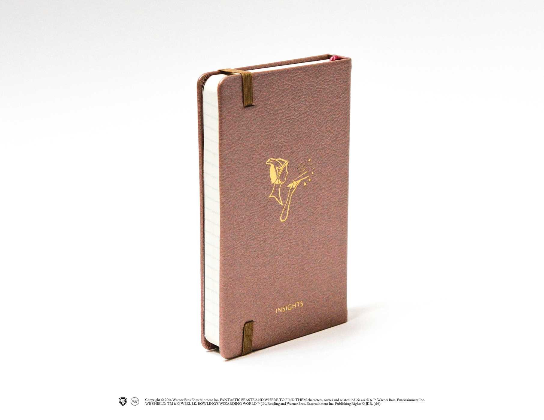 Fantasting Beasts, les produits dérivés Fantastic-beasts-and-where-to-find-them-obliviate-hardcover-ruled-notebook-9781608879472.in03