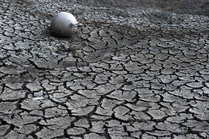 Día Internacional de la Tierra: imágenes para reflexionar Ff2d58b6-5fd2-4f31-a12c-7f4ff2bf10c3_879_586