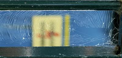 Sợi tơ nhện và những ứng dụng Mangnhen