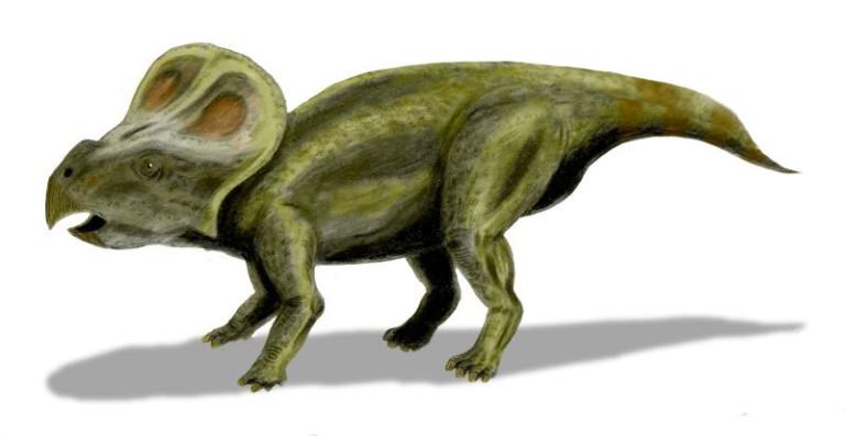 Des chercheurs viennent de faire une découverte incroyable sur la disparition des dinosaures ! Par Justine Manchuelle                            Protoceratops-768x397