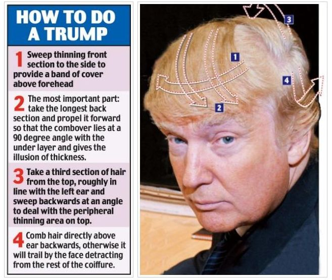 The Memes and Other Funny Images Thread Donald_trump_hairdo
