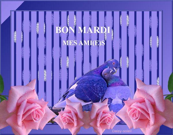 BON MARDI MES AMI(E)S
