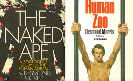 Secret Surrealist: The paintings of 'Naked Ape' zoologist Desmond Morris  05nakedapehumanzoo_465_286_int
