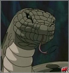 Techniques Serpents P5egzh12
