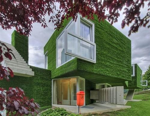 Những ngôi nhà xanh độc đáo trên thế giới  547