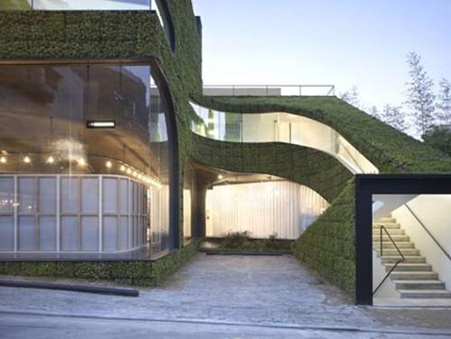 Những ngôi nhà xanh độc đáo trên thế giới  550