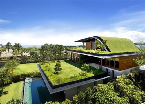 Những ngôi nhà xanh độc đáo trên thế giới  552
