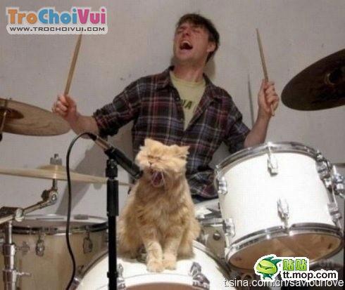 Những bức ảnh hài ko đỡ nổi KenhSinhVien.Net-anhdoc-25