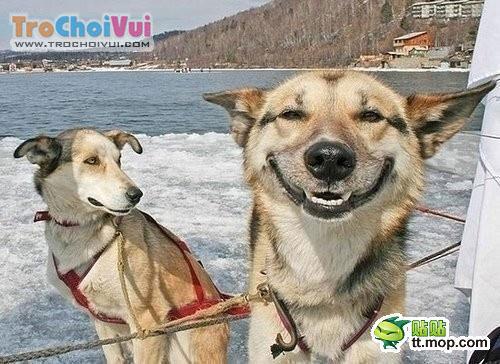 Những bức ảnh hài ko đỡ nổi KenhSinhVien.Net-anhdoc-27