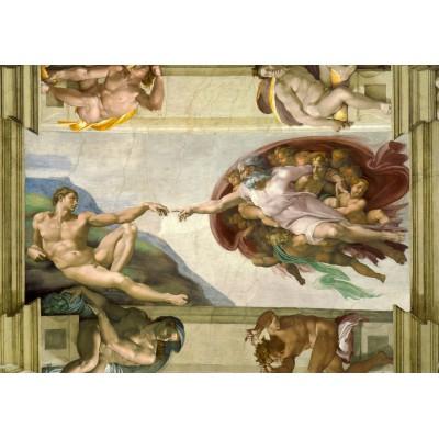 Personnes transgenres : ce qu'en disent les monothéismes (article) Grafika-00727-michel-ange-la-creation-dadam-de-la-chapelle-sixtine-1508-1512-puzzle-1000-pieces.49297-1