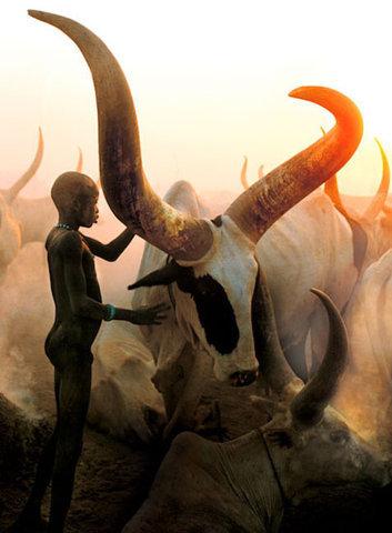 .. un viaje a la sabana africana ... Tumblr_lni7zwqcLy1qhisi7o1_400_large