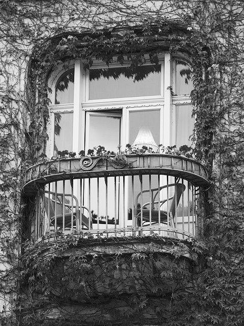 Prozori koji govore - Page 3 Tumblr_lrlaloLbRc1qkwwzlo1_500_large
