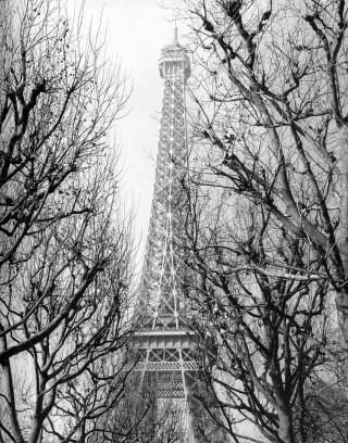Paris city of love Michael-woods-234334-320-408_large