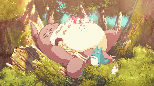 Totoro Tumblr_md40yw7G8j1qiwduxo1_500_large