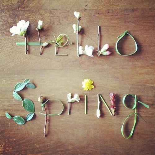**hola primavera** 574880_492296687497876_748006048_n_thumb_500x500_large