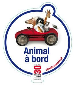 Camions/voitures aménagé(e)s: voyager avec nos chiens - Page 3 Mod_article5536183_3