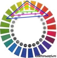 Цвет  163671--47223516-h200-u898d3