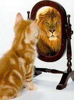 Народная мудрость: Притчи, пословицы, поговорки, присказки, приметы... 163671--48263975-h200-uf06ca