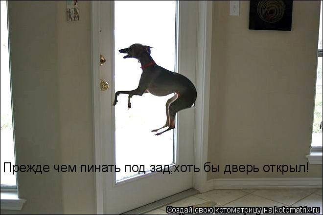 Украиночкины хвастушки 63079-6957e-15339382-