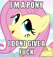 POPOPOneys Im_a_pony_I_dont_give_a_fuck
