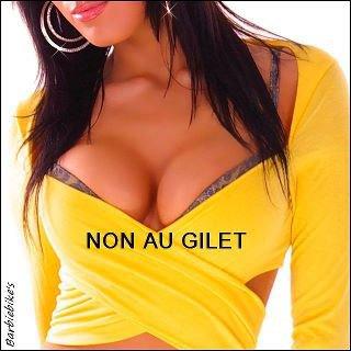 Gilet jaune : Obligatoire mais pas trop 3054108345_1_5_KUkobBEN