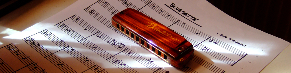 Harmonica Brodur signature SebCharlier - Page 2 DSCF3223-23b