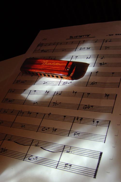 Harmonica Brodur signature SebCharlier - Page 2 DSCF3226-26b