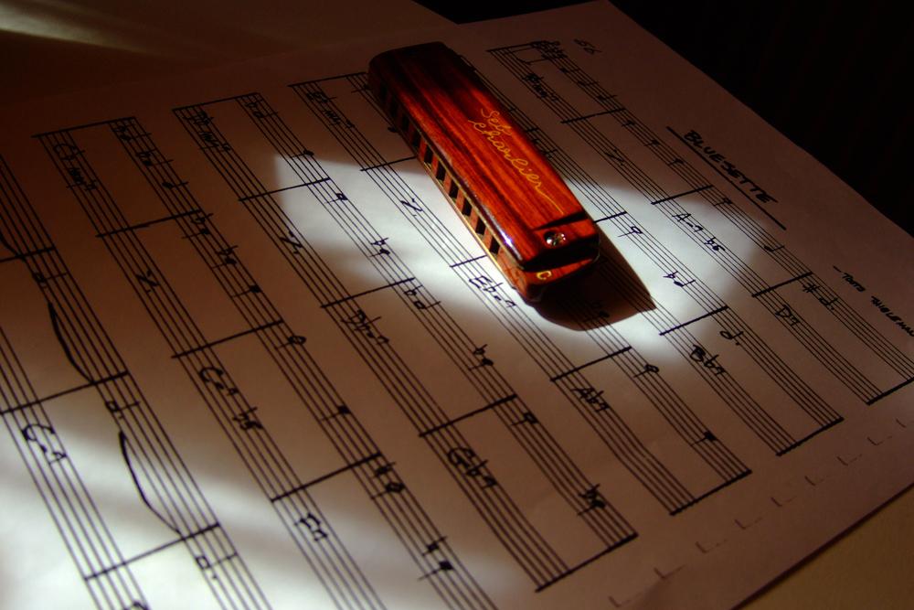 Harmonica Brodur signature SebCharlier - Page 2 DSCF3227-27b