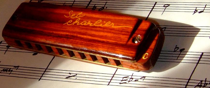 Harmonica Brodur signature SebCharlier - Page 2 DSCF3229-29