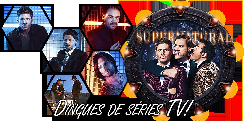 Dingues de séries télé - Page 14 DdSTV5-V3-L2