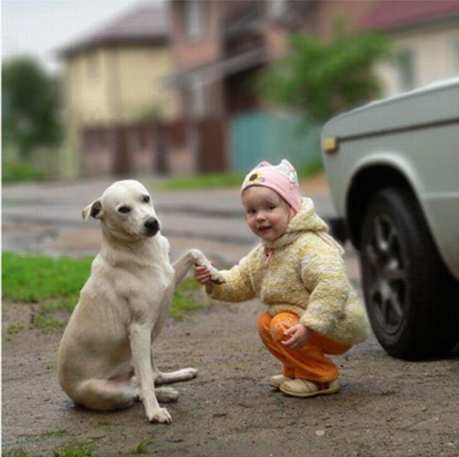 Volim te kao prijatelja, psst slika govori više od hiljadu reči - Page 3 Friends_02