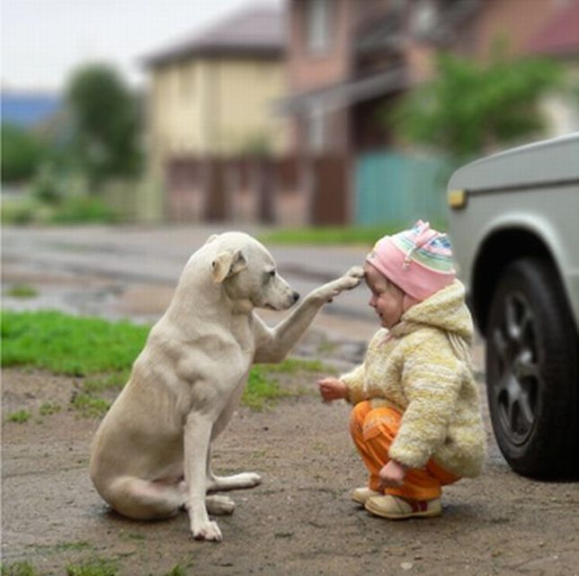 Volim te kao prijatelja, psst slika govori više od hiljadu reči - Page 3 Friends_04