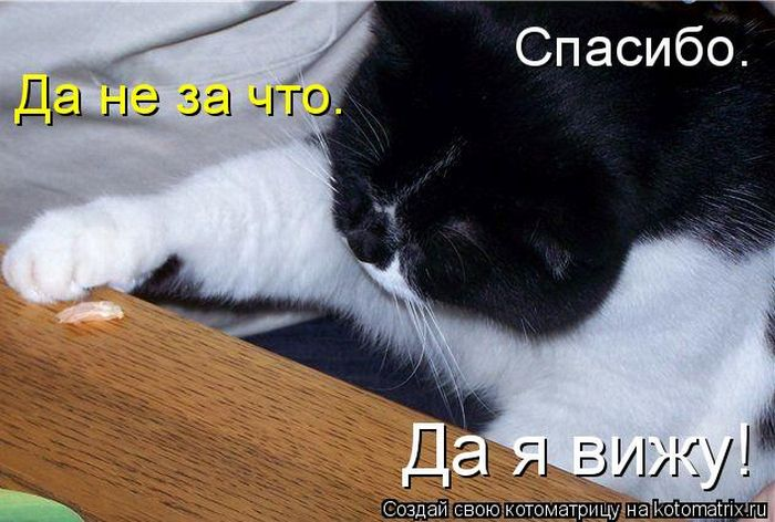 давайте посмеемся - Страница 39 Kotomatrix_20