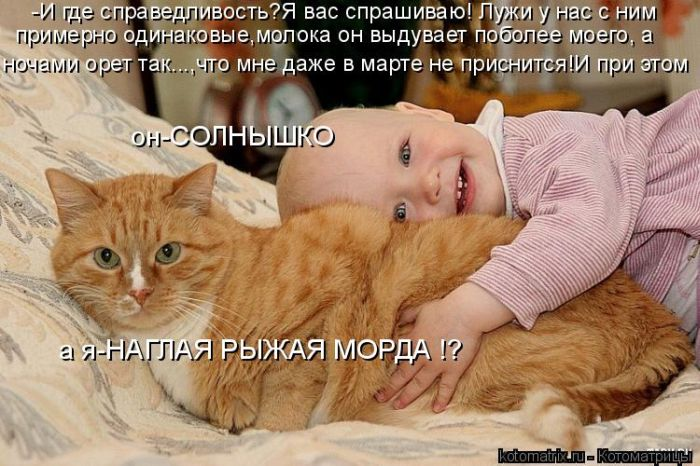 давайте посмеемся - Страница 39 Kotomatrix_32