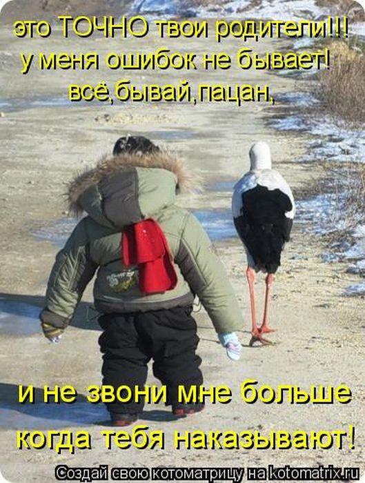 давайте посмеемся - Страница 5 Kotomatrix_03