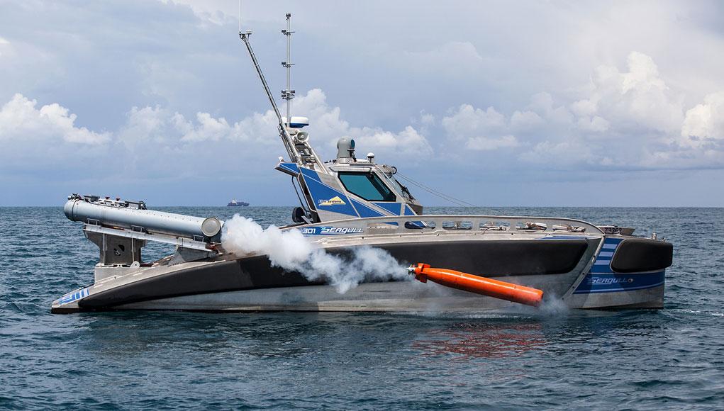 Israeli Navy: News Seagull_torpedo1021