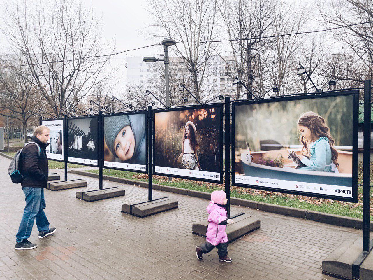"""Природа у ЖК """"Летний сад"""" - Страница 7 Photo_2019-11-08_15-47-13"""